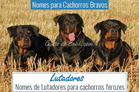 Nomes para Cachorros Bravos - Lutadores