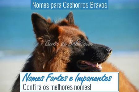 Nomes para Cachorros Bravos - Nomes Fortes e Imponentes