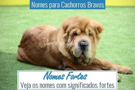 Nomes para Cachorros Bravos - Nomes Fortes
