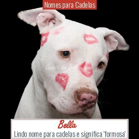 Nomes para Cadelas - Bella