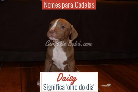 Nomes para Cadelas - Daisy