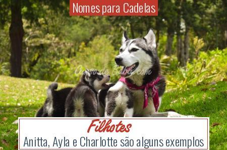 Nomes para Cadelas - Filhotes