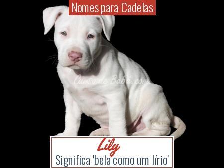 Nomes para Cadelas - Lily