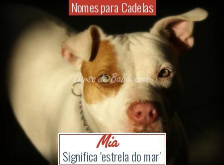 Nomes para Cadelas - Mia