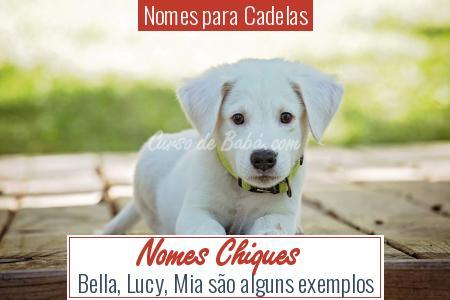 Nomes para Cadelas - Nomes Chiques