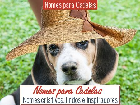 Nomes para Cadelas - Nomes para Cadelas