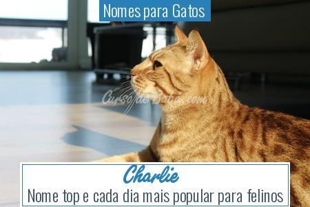 Nomes para Gatos  - Charlie