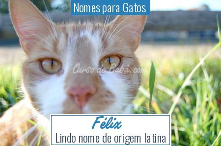 Nomes para Gatos  - Félix