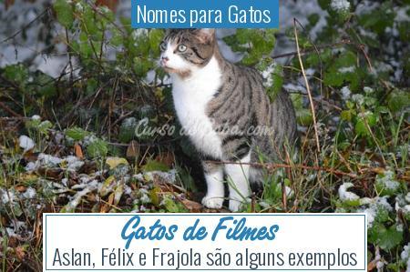 Nomes para Gatos  - Gatos de Filmes