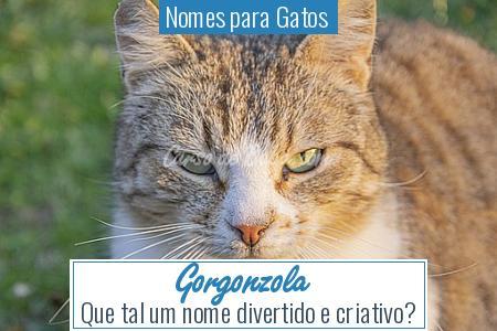 Nomes para Gatos  - Gorgonzola
