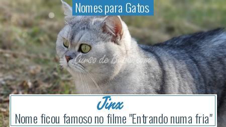 Nomes para Gatos  - Jinx