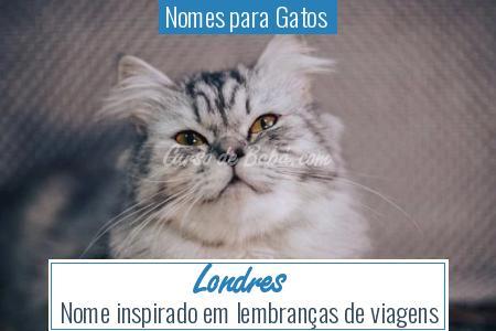 Nomes para Gatos  - Londres