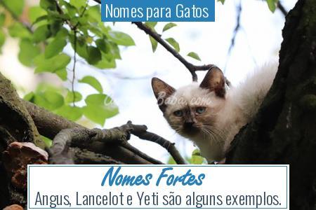 Nomes para Gatos  - Nomes Fortes