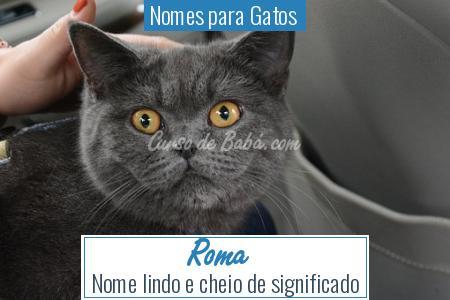 Nomes para Gatos  - Roma