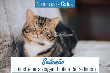 Nomes para Gatos  - Salomão
