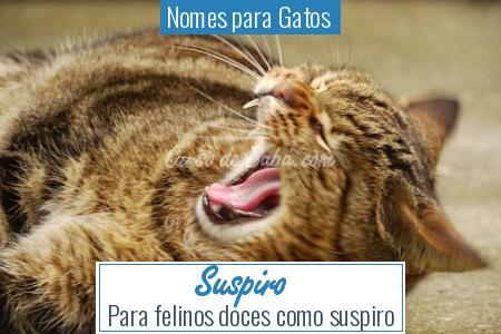 Nomes para Gatos  - Suspiro