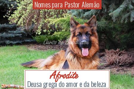 Nomes para Pastor Alemão - Afrodite