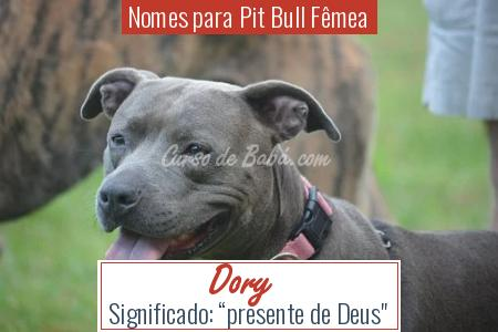 Nomes para Pit Bull Fêmea - Dory