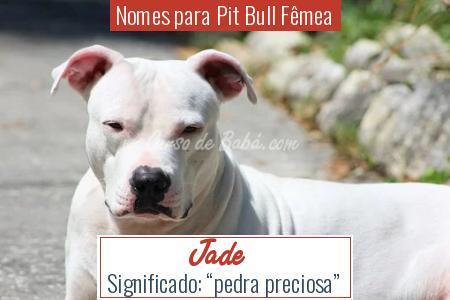 Nomes para Pit Bull Fêmea - Jade