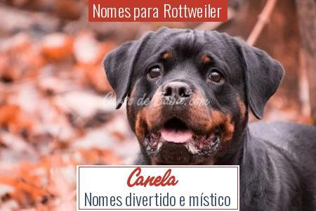 Nomes para Rottweiler - Canela