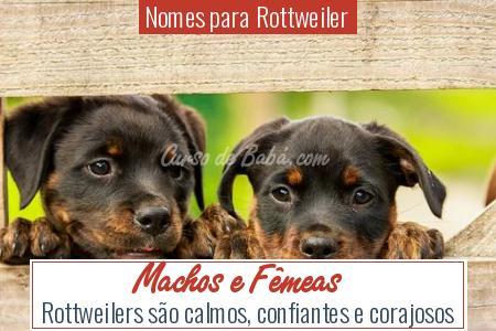 Nomes para Rottweiler - Machos e Fêmeas