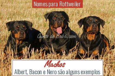 Nomes para Rottweiler - Machos