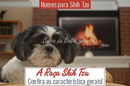 Nomes para Shih Tzu - A Raça Shih Tzu