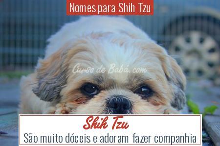 Nomes para Shih Tzu - Shih Tzu