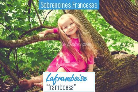 Sobrenomes Franceses - Laframboise