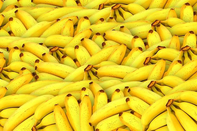 papinha de frutas