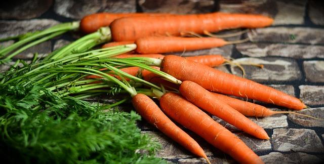 papinha de cenoura e chuchu