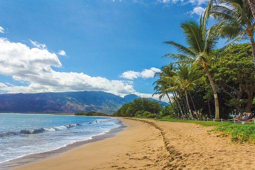 significado-sobrenomes-havai